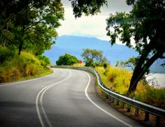 Enjoy the scenery of the Great Barrier Reef Drive on your way to Port Douglas, Australia