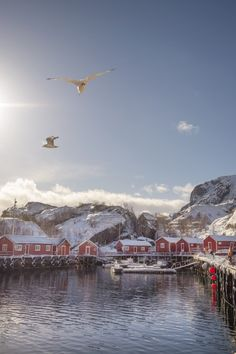Lofoten Islands Photography Locations - Your Guide to the Best Spots Best Travel Websites, Best Places To Travel, Travel Around The World, Around The Worlds, Lofoten Islands Norway, Photo Location, Cheap Travel, Travel Deals, Travel Agency