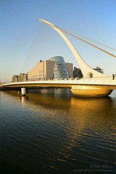 The Golden Harp - Samuel Beckett Bridge - Dublin