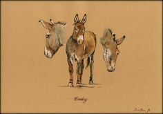 Donkey . A reproduction of my original painting.    These high quality prints are printed with a fine art printing process on a 250 g/m2 high