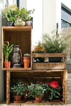This would be a nice display for a porch or patio.  Plants on the bottom wouldn't do to well, no sunlight, use decorations or heavy shade plants.