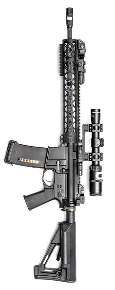 Rainier Arms Urban Carbine RUC. Photo by Stickman