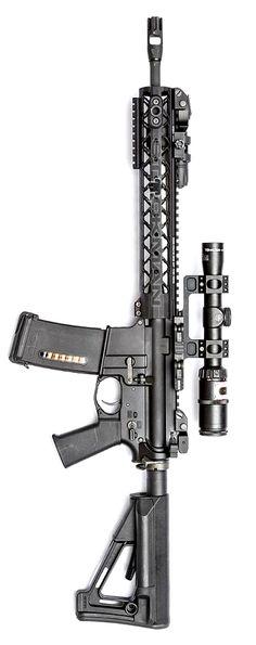 Rainier Arms Urban Carbine RUC. Photo by Stickman