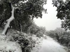 snow day. Mountains Alicante Spain
