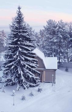 Find images and videos about photography, winter and snow on We Heart It - the app to get lost in what you love. Winter Szenen, I Love Winter, Winter White, Winter Season, Winter Christmas, Winter Cabin, Russian Winter, I Love Snow, Snowy Day