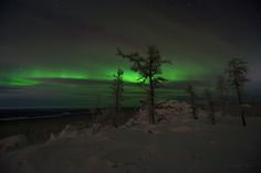 aurora borealis- must see Sunset Pictures, Nature Pictures, Places To Travel, Places To See, Beautiful World, Beautiful Places, Color Of Night, Green Sky, See The Northern Lights