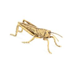 Metal Insect | ZARA HOME Canada