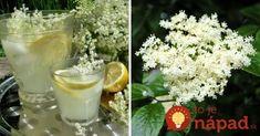 Biely zázrak z prírody: Vyrobte si domáci bazový sirup Korn, Glass Of Milk, Food And Drink, Drinks, Syrup, Drinking, Beverages, Drink, Beverage