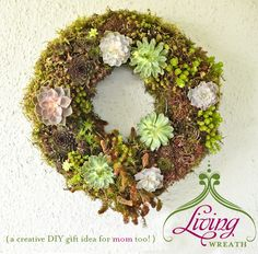 DIY Tutorial: How to Make a Living Wreath. Need 2 make a couple of these.