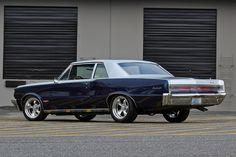 Muscle Cars, GSD,s. Protect the wolves, horses. 1965 Gto, 1965 Pontiac Gto, Pontiac Lemans, Pontiac Cars, Pontiac Bonneville, Pontiac Firebird, Nissan Trucks, Chevrolet Trucks, Pontiac Tempest