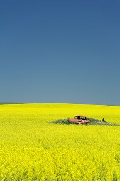 Enchanted Highway (North Dakota) 31 Breathtaking Photos Of Abandoned Locations Enchanted Highway, Beautiful World, Beautiful Places, Wow Photo, Felder, North Dakota, Mellow Yellow, Abandoned Places, Abandoned Cars