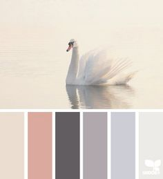 Blogging // Color palettes by nerdParty