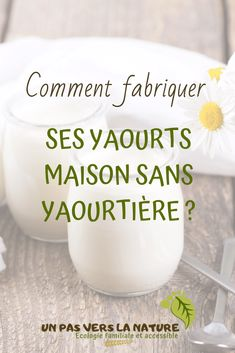 Discover recipes, home ideas, style inspiration and other ideas to try. Mousse, Batch Cooking, Cooking Time, Yogurt Recipes, Vegan Recipes, Cooking Humor, Creme Dessert, Vegan Yogurt, Vegetable Drinks