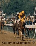 1970 Kentucky Derby Winner Dust Commander
