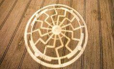 """Disso Voce Sabia?: Crop Circle - Símbolo do """"Sol Negro"""" impresso em um campo de trigo em Drove, Wiltshire"""