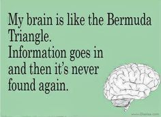 My brain is like the Bermuda Triangle. Information goes in and then it's never found again. #Funny #Brain #picturequotes  View more #quotes on http://quotes-lover.com