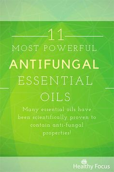 The 11 Most Powerful Antifungal Essential Oils - Healthy Focus Homemade Essential Oils, Essential Oil Uses, Essential Oil Diffuser, Antifungal Foods, Plant Therapy Essential Oils, Lemongrass Essential Oil, Natural Cleaning Products, Motivation, Aromatherapy