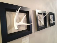 Real deer antlers painted and hung on wall with a picture frame around each.