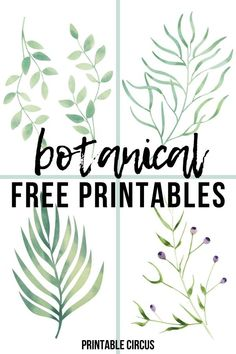 Botanical Wall Art, Botanical Prints, Free Art Prints, Wall Art Prints, Wal Art, Cactus Wall Art, Leaf Wall Art, Animal Decor, Gallery Walls