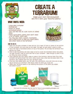 Make a Terrarium! Have fun creating your own ecosystem with this fun and FREE download! Keep exploring and don't forget to PLAY WILD!