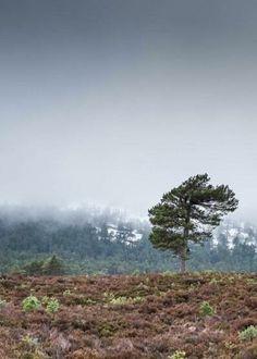 Matt B Roberts' Photography   Outlander Starz