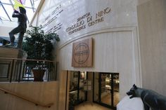 Province halts Toronto Catholic board's controversial land deal -- Coitus interuptus?