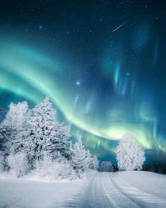 Aurora over snow. - - Terence - Aurora over snow. - Aurora over snow. Landscape Photography Tips, Winter Photography, Night Photography, Scenic Photography, Abstract Landscape, Landscape Paintings, Acrylic Paintings, Landscape Photos, Urban Landscape