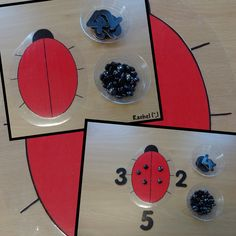"Ladybird inspired play activities for the Early Years classroom - from Rachel ("",) Insect Activities, Eyfs Activities, Nursery Activities, Counting Activities, Simple Addition, Math Addition, Kindergarten Addition, Early Years Maths, Early Years Classroom"