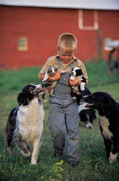 Farm Boy & Puppies, North Dakota.. Now this is the life!