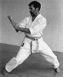 Resultado de imagen de soete karate
