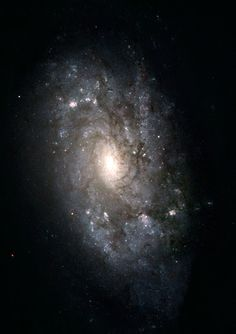 #SpiralGalaxy #NGC3949 - is similar to our galaxy, the #MilkyWay! This galaxy has a blue disc composed of young stars peppered with bright pink regions, places where stars are born. In contrast to the blue disk, the bright central bulge is made up mostly of older, redder stars. It lies about 50m light years from #Earth & is a member of a group of galaxies about six or seven dozen members...