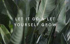 Let it go & let yourself grow