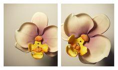Orchid орхидея из фома 33