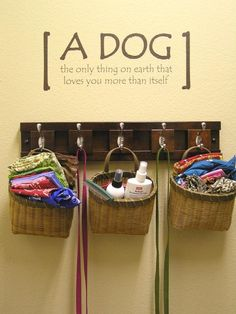 A space where all the dog stuff is kept in one place...love the quote : )