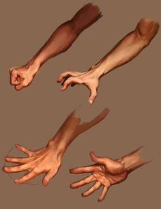 Exceptional Drawing The Human Figure Ideas. Staggering Drawing The Human Figure Ideas. Hand Drawing Reference, Human Reference, Anatomy Reference, Art Reference Poses, Anatomy Sketches, Anatomy Drawing, Anatomy Art, Hand Anatomy, Body Anatomy