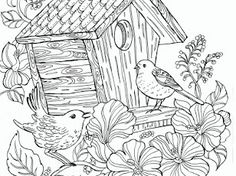 Birds - Google Drive Bible Verse Coloring Page, Coloring Pages, Colouring, Addams Family Characters, Kids Church, Google Drive, Birds, Christian, Creative