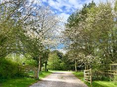 Driveway entrance with gates you can close to prevent any of your guests from leaving!