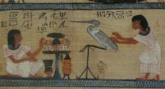 The late 18th dynastry papyrus of Nakht from Thebes.  The illustrations show scenes from the afterlife and an agricultural paradise called the 'Field of Reeds.  From the collection at the British Museum, London, England.