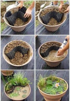 Ways To Build A Miniature Garden With Items Found In Your House