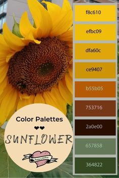 Colors of the sunflower! This amazing palette is the inspiration for making paper flowers and other Diy home decor! This color palette is from an untouched photo from a local garden. Perfect for papercrafts, DiY Home Decor, and more. Diy Crafts For Adults, Diy Crafts For Gifts, Diy For Teens, Summer Crafts, Colour Pallete, Color Combos, Sunflower Colors, Sunflower Kitchen, Paper Flowers Diy