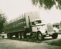Peterbilt 351 Livestock Haulers