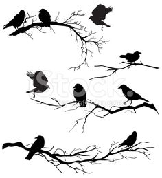 Black Silhouette Crows Perched on Branches of Various Lengths royalty-free stock vector art