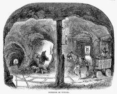 1860 Photograph - California Gold Rush, 1860 by Granger