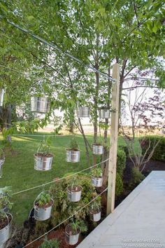 If you need more gardening space, or you just want to try something a little more unique and interesting, consider a vertical garden.There is nothing new about the idea of going up in garden design…... Read More