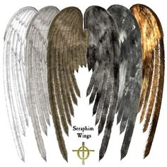 seraphim warriors | Guardian Angels