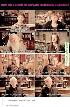Funny Pictures How Do I Begin To Explain Hermione Granger?