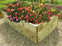 Raised flower beds made from Pressure treated timber boards. Smooth planed and bull nosed edges look fantastic when planted with your choice of bedding plants. Raised Flower Beds, Raised Beds, Greenhouse Farming, Pressure Treated Timber, Growing Flowers, Garden Spaces, How To Level Ground, Garden Planters, Vegetable Garden