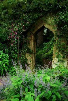 Entrance to the secret garden...