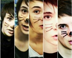 Evolution of the whiskers