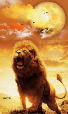 """""""¿Ruge un león en la selva sin tener presa? ¿Gruñe un leoncillo desde su guarida si no ha apresado algo?""""...Amós 3:4 ღ✟"""